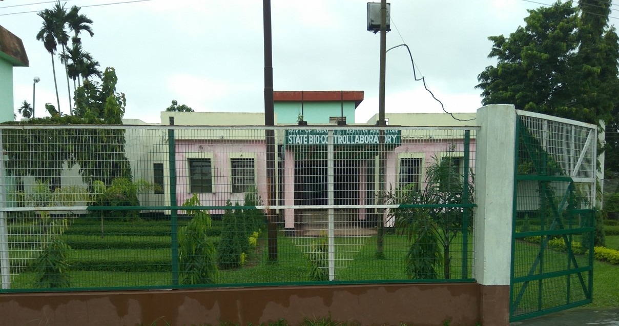 Office Building Agartala