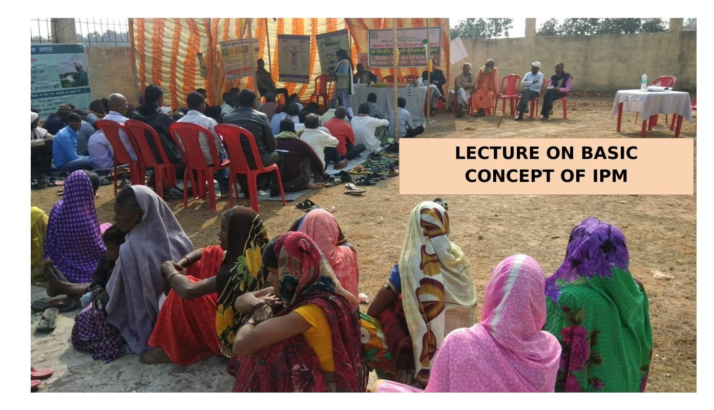 Lecture on Basic Concept of IPM