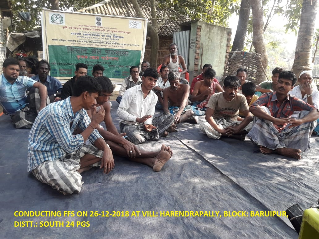 FARMERS INTERACTION IN THE FFS