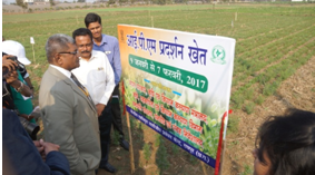Inauguration of IPM Demo Plot by PPA