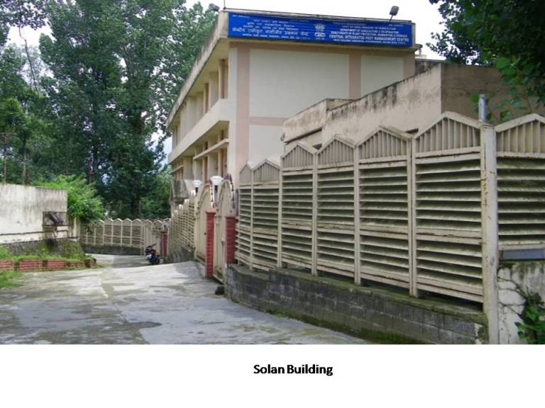 Office Building Solan