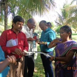 Survey on Rugose Spiraling Whitefly in coconut
