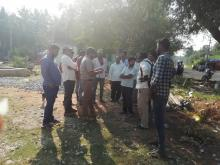 Special survey to assess the infestation of Ambrosia psilostachya at Turuvekere Taluk, Tumkur district