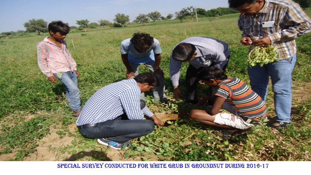 Field Training to Farmers